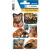 Herma 3527 DECOR Sticker - Katzen Fotos - 21 Sticker