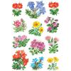 Herma 3582 DECOR Sticker - Gebirgsblumen - 36 Sticker