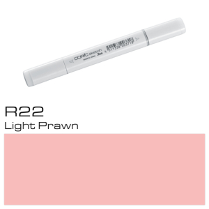 Copic Sketch Typ R-22