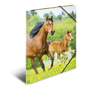 Herma 7140 Sammelmappe - DIN A4 - Pferde