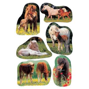 Herma 5443 DECOR Sticker - Pferdefotos - 18 Sticker