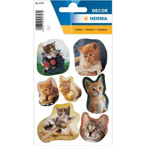 Herma 5747 DECOR Sticker - fotogene Kätzchen - 21...