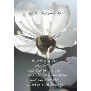 Komma3 Trauerkarte Blume Alles hat seine Zeit