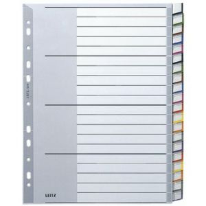 Leitz Register - DIN A4+ - blanko - Kunststoff - grau -...