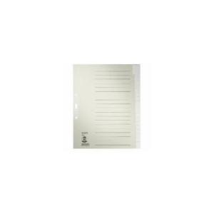 Leitz Register - DIN A4+ - blanko - Tauenpapier - grau -...