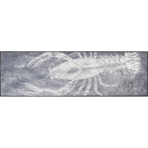 wash+dry Schmutzfangmatte Grey Lobster - 60 x 180 cm
