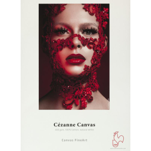Hahnemühle Cézanne Canvas Inkjet-Leinwad -...