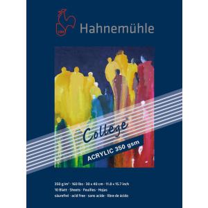 Hahnemühle Acrylmalkarton College - 350 g/m² -...